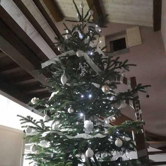 La Noël de la Cuisenaire Family